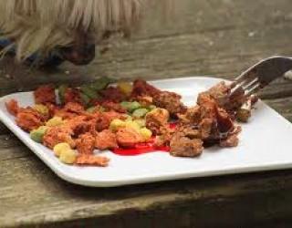 Dieta fai da te per il vostro cane