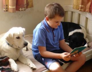 Bambini e cani: un gioco interattivo insegna loro il rispetto