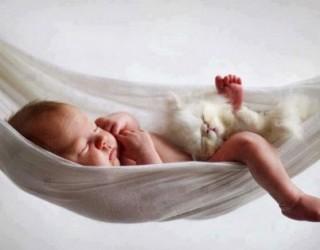 Cani, gatti e bambini: vivere con cani e gatti migliora la salute dei bimbi