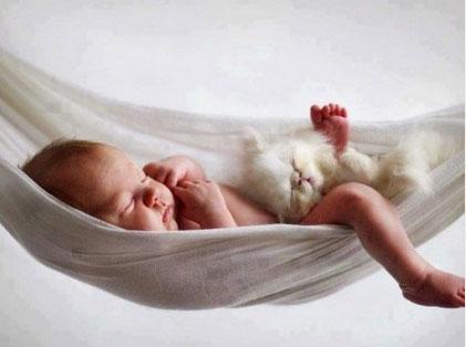Cani Gatti E Bambini Vivere Con Cani E Gatti Migliora La Salute