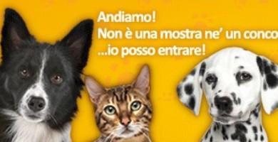 Quattrozampe in fiera…l'evento più pet friendly ritorna a Milano!