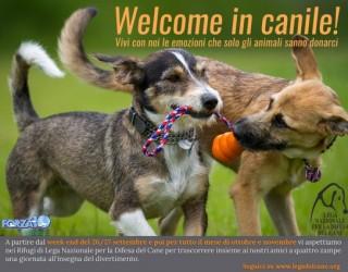 Welcome in canile, la nuova iniziativa di Lega Nazionale per la Difesa del Cane